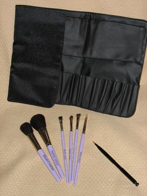 Mode Dion Pro Makeup Artist Brush Kit with Satin foldout Bag
