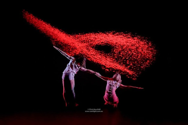Australian Dance Theatre in Garry Stewart's Multiverse
