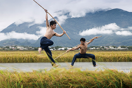 Cloud Gate Dance Theatre of Taiwan