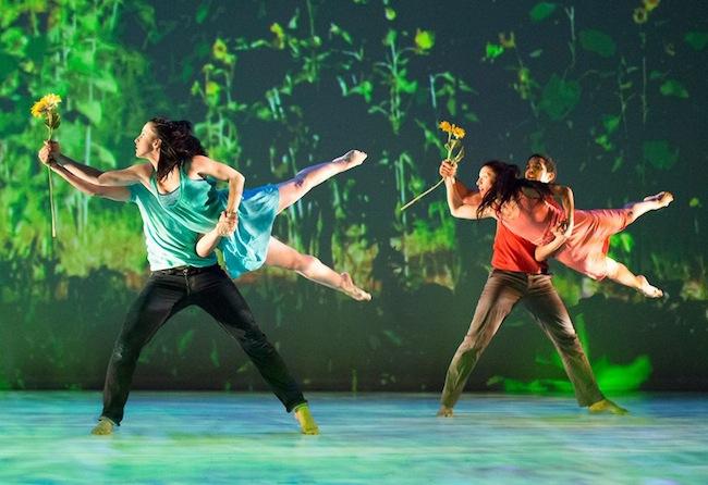 Hedwig Dances in Trade Winds/Aires de Cambio in October 2014