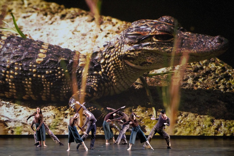 Parsons Dance in 'Dawn to Dusk.' Photo by Scott Suchman.