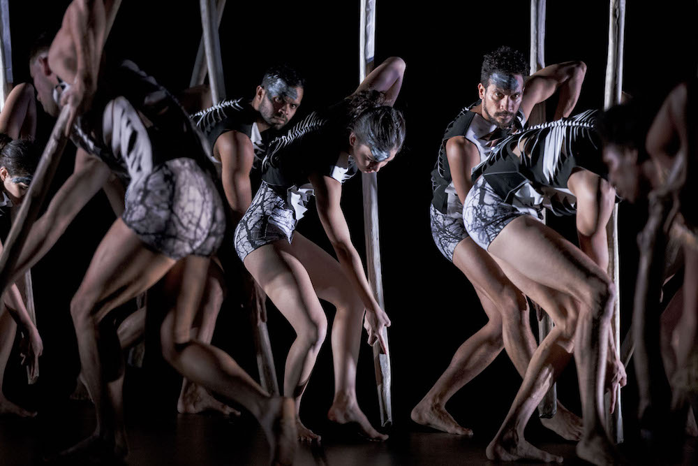 Lore by Bangarra Dance Theatre