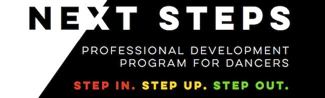Next Steps professional development program