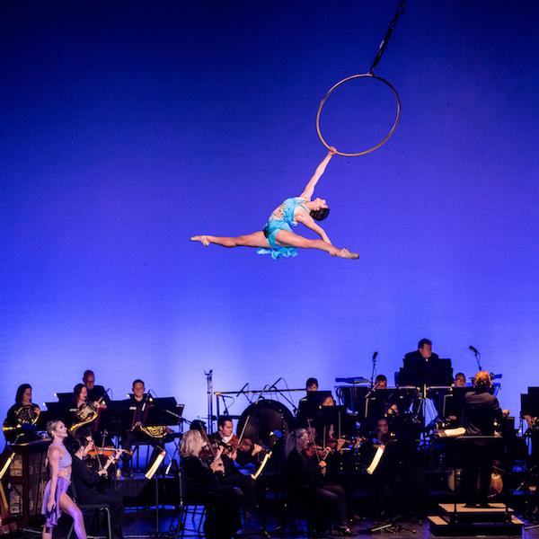 Symphony Cirque Series